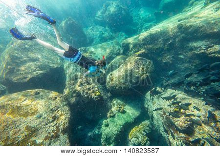 Man free diving in the blue waters of the popular Similan Islands in Thailand, one of the tourist attraction of the Andaman Sea.