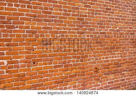 Busy Brick Wall Pattern