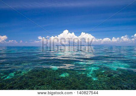 Heaven On Earth Marine Fantasy