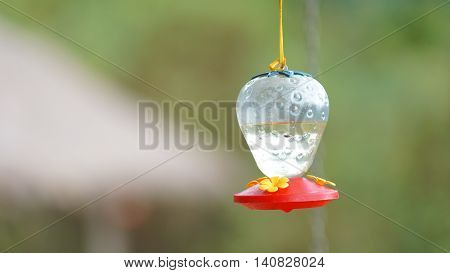Hanging plastic sprue for the hummingbird drink water