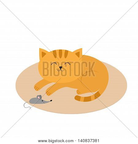 Cute sleeping orange cat lying on carpet rug mat. Moustache whisker. Little mouse. Animal friends. Funny cartoon character couple. White background. Isolated. Flat design. Vector illustration