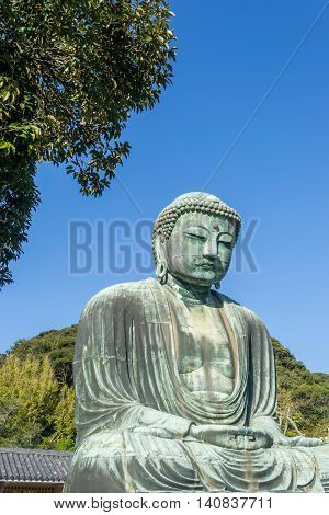 Kamakura Daibutsu or Great Buddh in Kamakura Kotokuin TempleJapan.