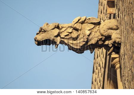detailed lion head frieze on the wall of Barcelona Cathedral