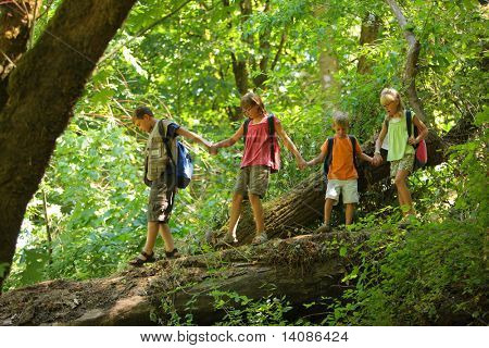 Kids in wilderness walking across log