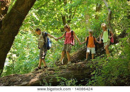 Kids in wilderness walking across log