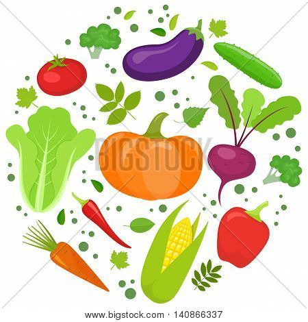 Set of colorful vegetables in circle shape background. Template for packaging cards posters and eco food menu. Vector stock illustration.