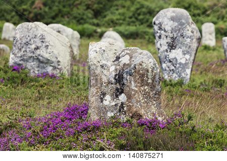 Carnac stones in Brittany. Carnac Brittany France
