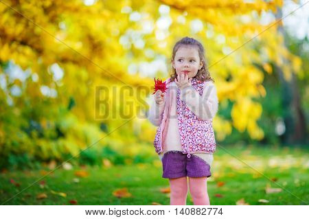 Little kid girl at beautiful autumn park. child having fun with colorful foliage. Family portrait outdoors.