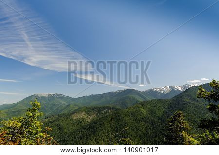Hurricane Ridge mountains and glaciers with cloudscape in Olympic National Park Washington State uSA