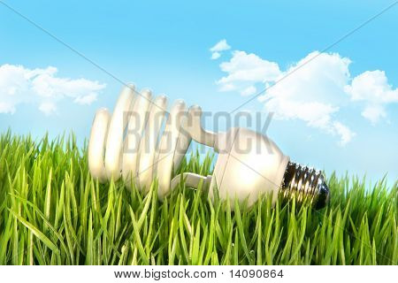 Eco-friendly light bulb lying in the grass against blue sky