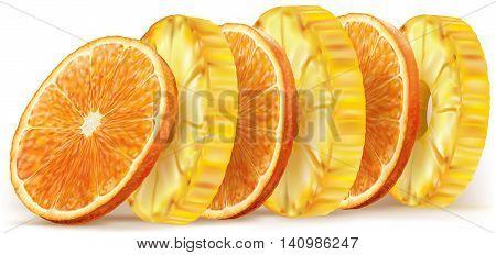 Pineapple and orange fruit round slices. Vector illustration