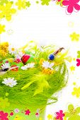 Picture of Decorative eggs in the nest and framed rendered flowers with copyspace poster