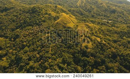 Rainforest, Jungle Covered With Green Vegetation And Trees On The Tropical Island, Landscape. Aerial