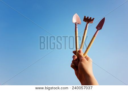 Gardening Tools In Miniature. Rake, Shoulder Blades. Hand Holds Garden Tools Against The Sky. Garden