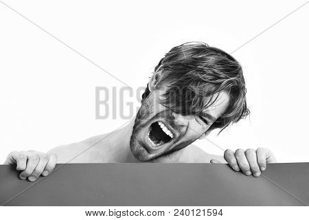 Bearded Man, Short Beard. Caucasian Sexy Topless Athletic Young Angry Brutal Macho With Stylish Bear