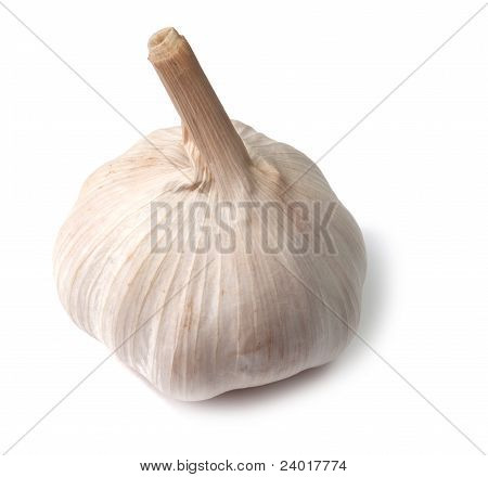 Single Garlic Bulb On White Background