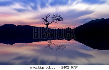 Sunrise  With A Silhouette Of A Tree With Reflecting On Still Lake