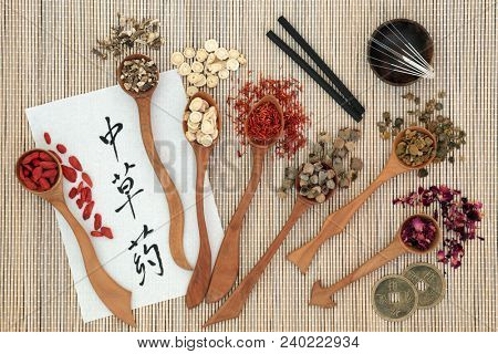 Traditional chinese herbs, acupuncture needles, moxa sticks used moxibustion therapy, feng shui coins and calligraphy script on rice paper on bamboo. Translation reads as chinese herbs. Top view.