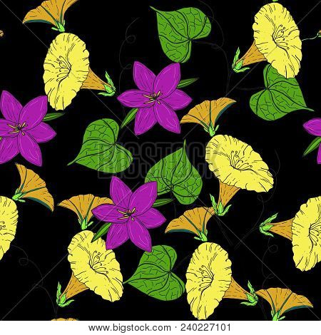 Vector Colored Pattern With Yellow Bindweed And Violet Crocus On Black Background. Vintage Flowers.