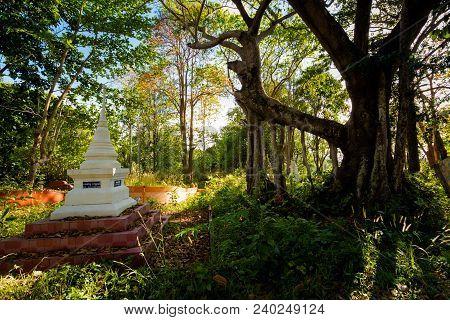 Grave In Krabi Thailand