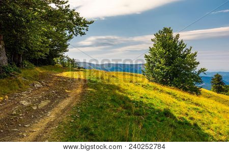 Country Road Through Forested Hillside. Lovely Summer Scenery Of Carpathian Mountains. Apetska Mount