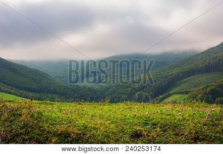 Landscape With Fields And  Forest On Hillside. Lovely Foggy And Cloudy Sunrise In Mountains