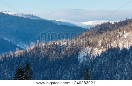Picturesque Sunrise Morning Winter Carpathian Mountains Landscape, Zelene, Verkhovyna, Ukraine.