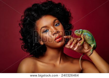 Beautiful Young Woman With Bright Makeup Holding Chameleon Lizard. Studio Beauty Sgot On Red Backgro