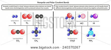 Nonpolar and Polar Covalent Bonds infographic diagram with examples of hydrogen oxygen carbon dioxide methane water formaldehyde and ammonia molecules for chemistry science education