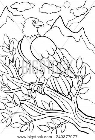 Coloring Pages Wild Birds Cute Eagle Sits On The Tree Branch And Smiles