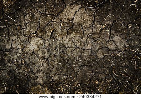 Dry Cracked Soil Texture And Background. Grunge Soil Background. Abstract Ground. Natural Abstractio