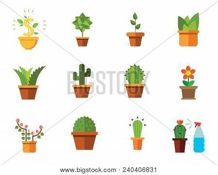 Potted Flowers Icon Set. Money Tree Cactus In Pot Cactus And Spray Bottle Plant Blooming Flower Chin