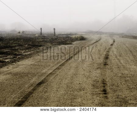 Tire Tracks On A Dirt Road