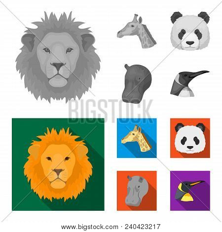 Panda, Giraffe, Hippopotamus, Penguin, Realistic Animals Set Collection Icons In Monochrome, Flat St