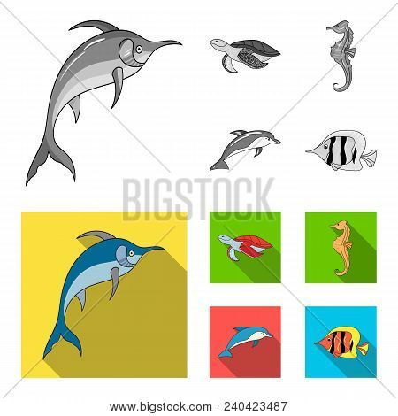 Merlin, Turtle And Other Species.sea Animals Set Collection Icons In Monochrome, Flat Style Vector S