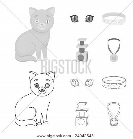 Cat Eyes, A Collar, A House For A Cat, A Medal On A Ribbon.cat Set Collection Icons In Outline, Mono