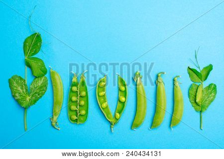 Fresh Green Ripe Sugar Snaps, Sweet Peas Copy Space Close Up On Blue Background, Flat Lay Food Conce