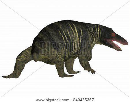 Jonkeria Dinosaur Tail 3d Illustration - Jonkeria Truculenta Was An Omnivorous Therapsid Dinosaur Th