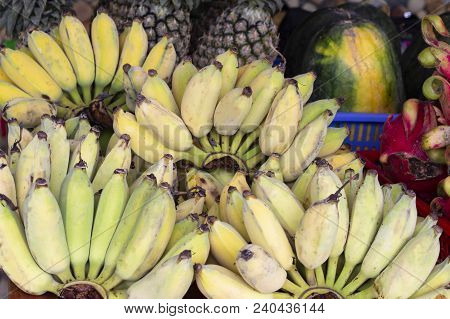 Tropical Fruit On Market. Small Banana And Pineapples. Yellow Bananas Selling. Plantains Or Cooking