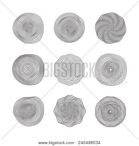 Abstract Wave Surfaces. Flowing Music Sound Waves. Smooth Ring Patterns Vector Collection Isolated.