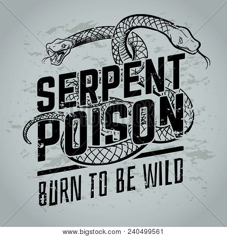 Gothic Poster With Viper Snake. Vintage Tattoo Or T-shirt Vector Design. Illustration Of Reptile Wil