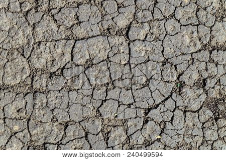 Texture Of Dry Cracked Chernozem Soil (black Soil). Flat Surface Close-up.