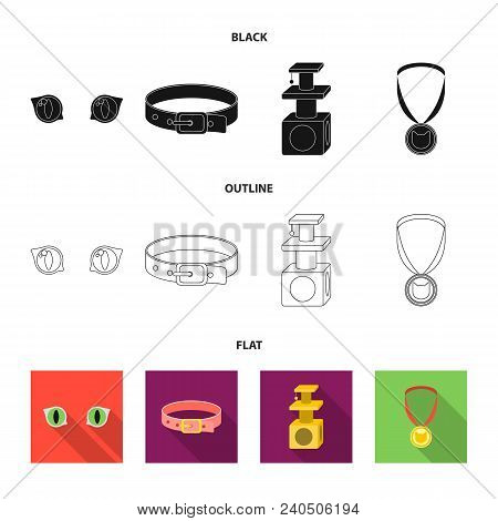 Cat Eyes, A Collar, A House For A Cat, A Medal On A Ribbon.cat Set Collection Icons In Black, Flat,