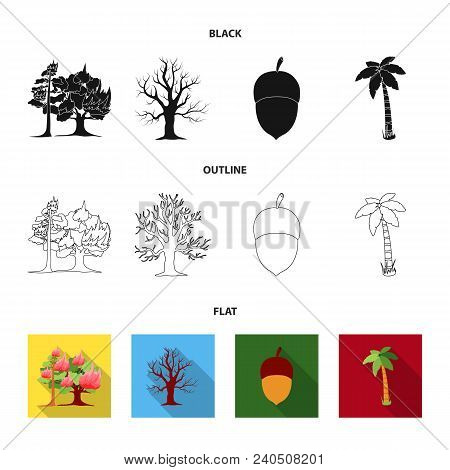 Burning Tree, Palm, Acorn, Dry Tree.forest Set Collection Icons In Black, Flat, Outline Style Vector