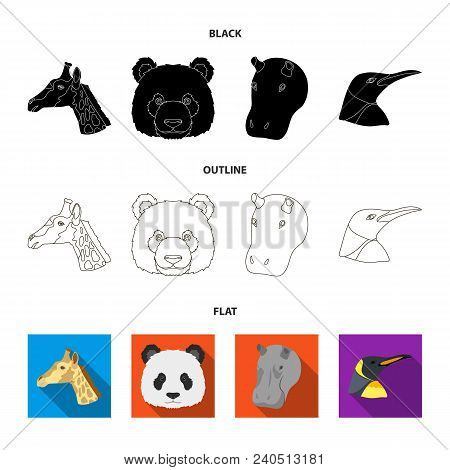 Panda, Giraffe, Hippopotamus, Penguin, Realistic Animals Set Collection Icons In Black, Flat, Outlin