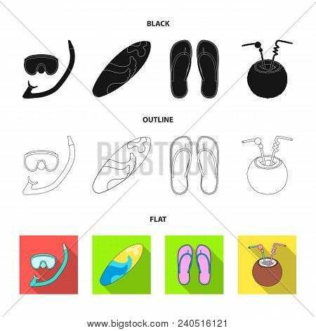 Diving, Surfing, Cocktail.summer Vacation Set Collection Icons In Black, Flat, Outline Style Vector