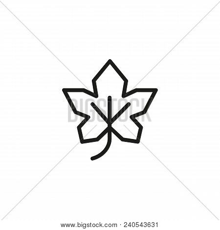 Maple Leaf. Flat Thin Line Illustration. Plant, Flora, Foliage. Leaf Concept. For Nature, Ecology, E