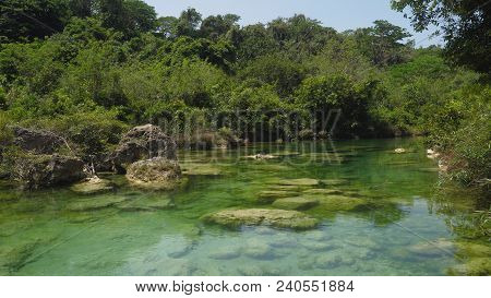 River Flows Through The Rainforest In The Jungle. Tropical River, Jungle. Tropical Rainforest Landsc