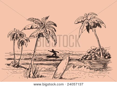 Vector Seascape drawing with palm