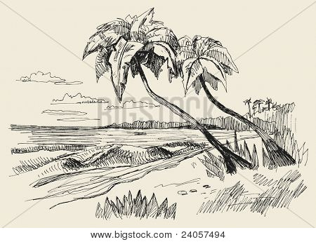 Vector illustration of summer beach and sea.